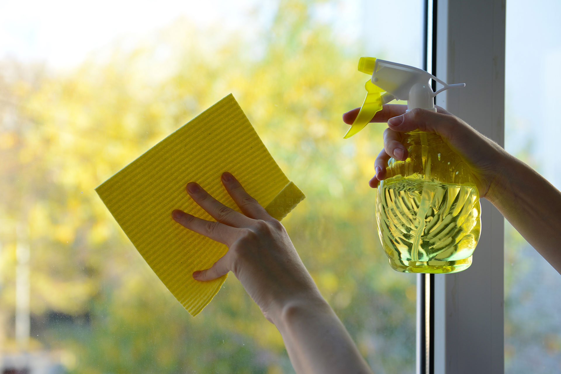 Limpieza De Cristales Empresas De Limpieza Y With Limpieza De  ~ Limpieza De Ventanas Y Cristales